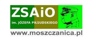 logo-zsaio